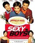 Sexy Boys (Mangupi overavaju orgazam) 2001
